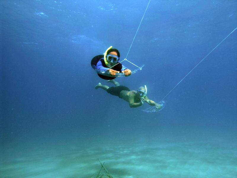 Under-Sea-Panama-Bocas-del-Toro-Tours-5