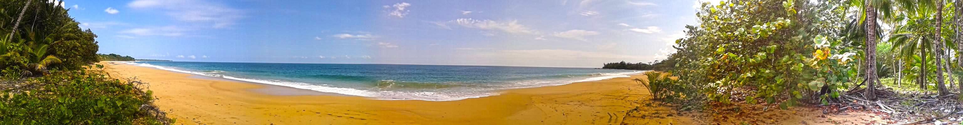 bluff-beach-bocas-del-toro